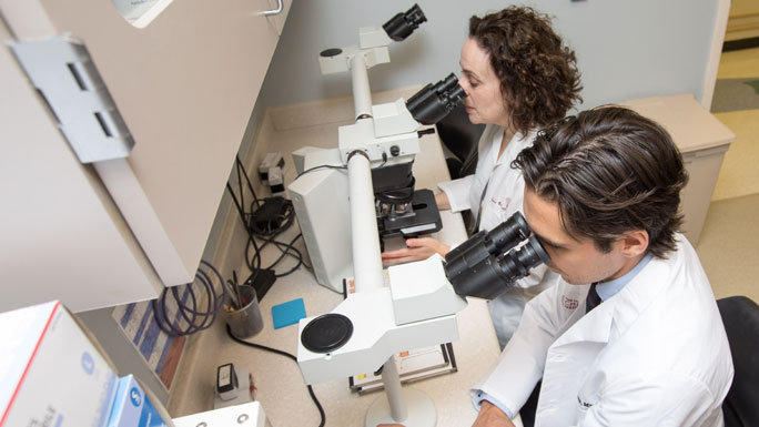 Diana Bolotin, MD, PhD, and Eduardo Moioli, MD, PhD, examine tissue under a microscope