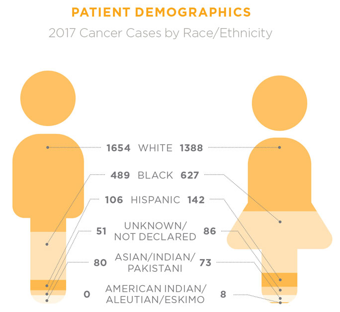 2017 cancer patient demographics by race and ethnicity