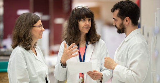 two female cancer faculty researchers with male researcher