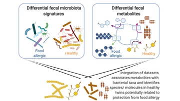 Analysis of the fecal microbiome and metabolome in healthy and food allergic twins has identified key bacterial changes that may play a role in the condition.