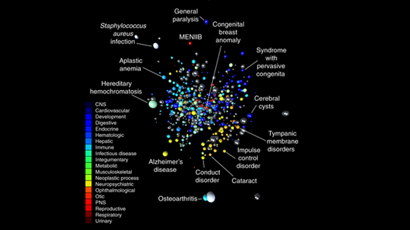 Disease embeddings