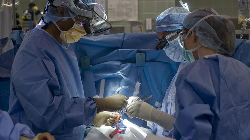 Transplant Center Articles - UChicago Medicine - UChicago