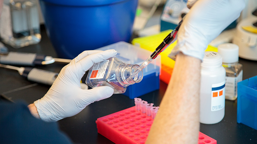 Scientist pipettes liquid into a vial in a  lab