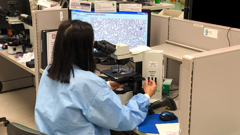 Pathology technician sits at a microscope