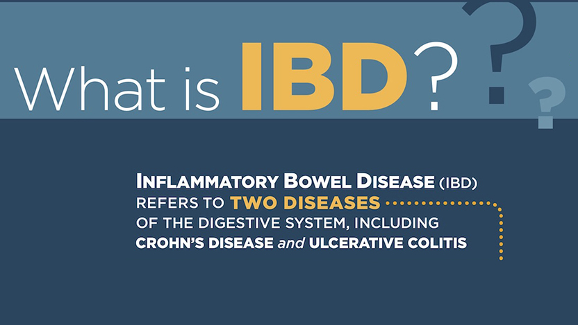 IBD infographic cover
