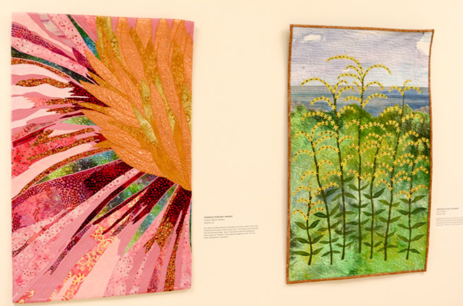 Two pieces of art from the natural healing exhibit