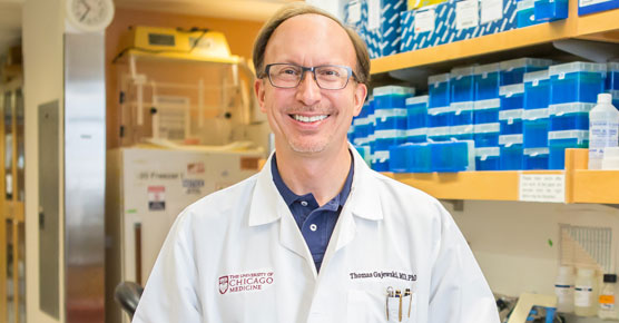Medical oncologist Thomas Gajewski, MD, in lab