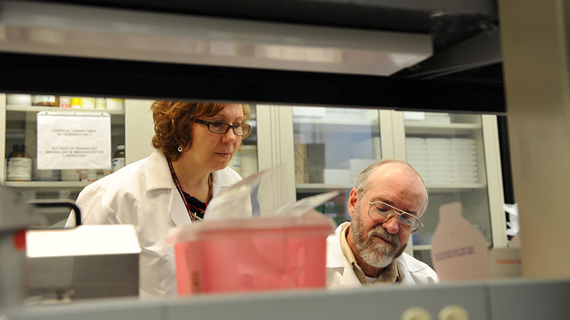 Portrait of physician Susana Marino, MD, PhD, D(ABHI), Associate Professor, Director, Transplant Immunology and Immunogenetics Lab, with an unidentified man in a lab