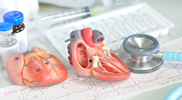 heart innovation and tech stroytelling 370 x 203